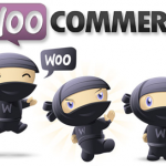 Seo para Woocommerce ¿tan friendly?